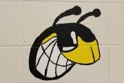 TC Howe Hornet